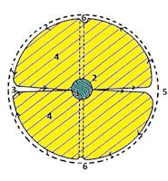 Modèle de particule d'Olivia Boa