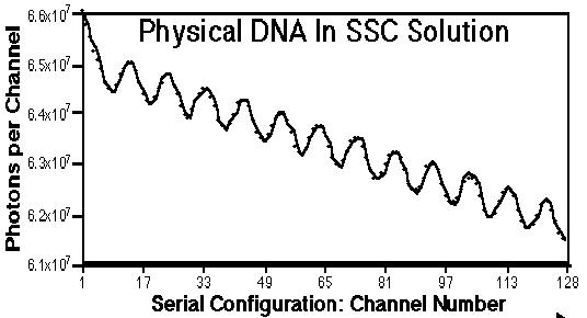 ADN fantôme b