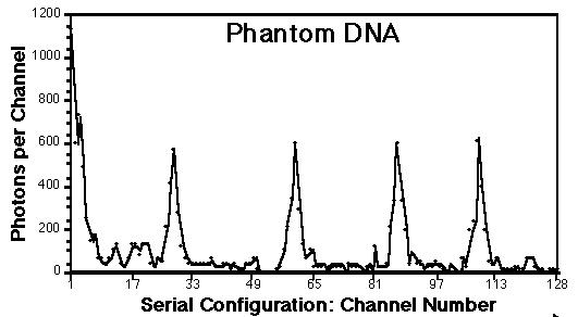 ADN fantôme c