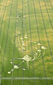 crop circle 2009 angleterre ©Lucy Pringle