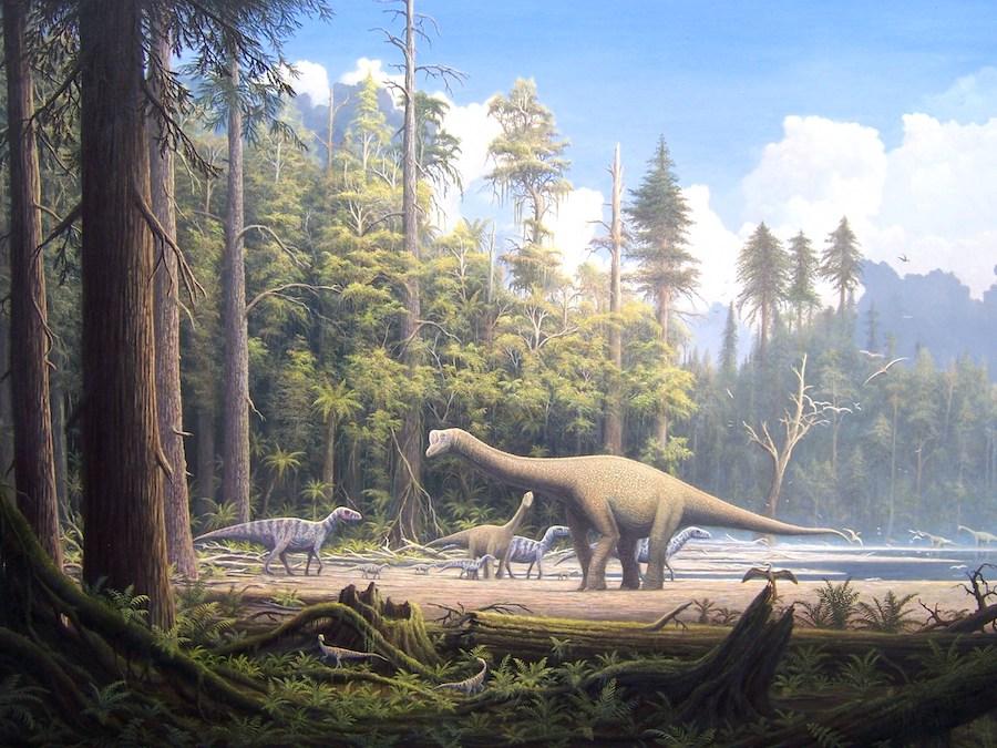 C14 datant dinosaures